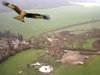 red kite over three horseshoes